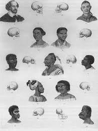 Racial Categories